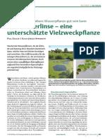 Die Wasserlinse – eine unterschätzte Vielzweckpflanze