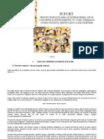 SUPORT Pentru Explicitare Si Intelegere Curric.et_4 August