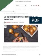 La cipolla_ proprietà, benefici e usi in cucina _ Melarossa