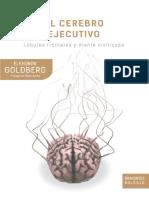 Cerebro ejecutivo - Elkonon Goldberg