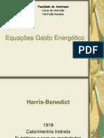 Equações gasto energético
