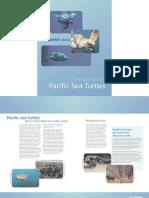 Turtle_Report[1]_Oceana_Loggerheads_Leather