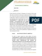 estudio de Impacto Ambiental Carhuamayo