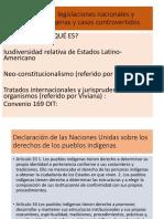 Ius diversidad, legislaciones nacionales, normas indígenas y casos