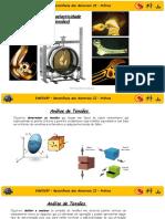 EME505P_EXP01 - Fotoelasticidade
