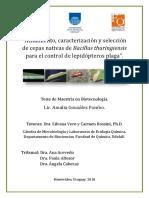 Bacillus en Uruguay- Tesis Maestria