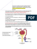 filtracion renal