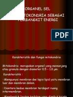 PERTEMUAN IX ORGANEL SEL MITOKONDRIA SEBAGAI PEMBANGIT ENERGI