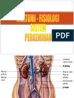 282947193 Anatomi Fisiologi Sistem Perkemihan
