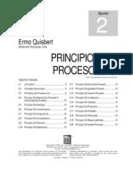 principios procesal civil