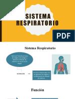 HistologÃ_a Sistema Respiratorio