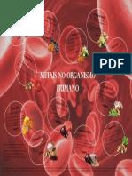 Poster Cientifico - Metais no Organismo Humano