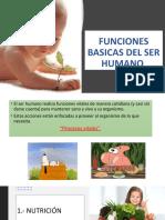FUNCIONES BASICAS DEL SER HUMANO