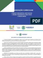 REORGANIZAÇÃO CURRICULAR - INTRODUÇÃO 2020