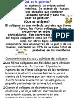 gelatina1-131024230614-phpapp01(1)