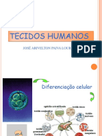 4,1 - TECIDOS HUMANOS (ARIVELTON)