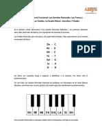 Armonía Funcional 1b