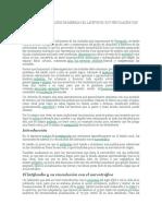 EXODO RURAL, CINTURONES DE MISERIA, LATIFUNDIO Y NARCOTRAFICO. lectura ensayo 2