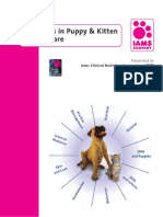 Advances in Puppy & Kitten