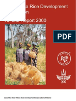 AfricaRice Annual Report 2000