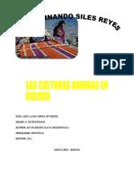 culturas andinas en Bolivia