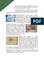 PATOLOGÍAS DE LAS EDIFICACIONES