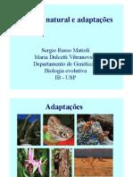 Aula 5 - Microevolução II - Seleção Natural e Adaptações