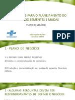 AULA 2_PLANO DE NEGOCIO - SEMENTES E MUDAS