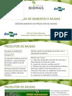 Aula 15_produção de Sementes e Mudas - Credenciamento Do Produtor de Mudas