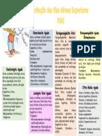 Mapa Mental 1 - IVAS