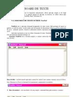 Bazele Informaticii - Cap. V. Procesoare de texte