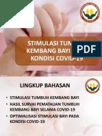 PPT Webinar-