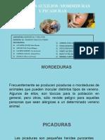 PRIMEROS AUXILIOS - MORDEDURAS Y PICADURAS
