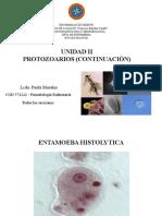UNIDAD II PROTOZOARIOS 2DA  parte