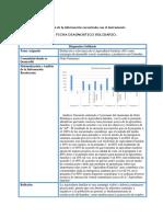 Ficha de Diagnostico Solidario_Dianoly Lasso (1)