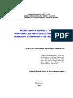 FLAMBAGEM POR DISTORÇÃO DA SEÇÃO TRANSVERSAL EM PERFIS DE AÇO FORMADOS A FRIO SUBMETIDOS À COMPRESSÃO CENTRADA E À FLEXÃO