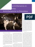 20-bov-terapeutica-antiinflamatoria