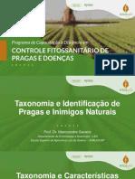 Taxonomia-e-Identificacao-de-Pragas-e-Inimigos-Naturais-Parte-I