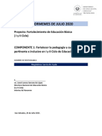 3 Informe Pedagógico Educación Acelerada Julio