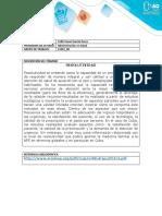 PlantillaEntregaFase1