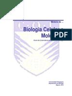 Modulo Completo de Bcmdoc
