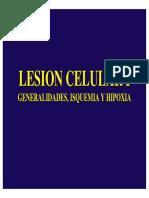 lesion celular I