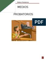 TRABAJO EXPOSICION MEDIOS PROBATORIOS[1][1]