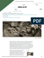 DNA antigo conta nova história sobre o povo de Luzia – Jornal da USP