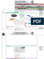PLANIFICACIÓN SEMANAL (05) DEL PRIMER  PARCIAL  DEL SEGUNDO QUIMESTRE 01 AL 05 DE MARZO  DEL 2021 6TO B