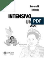 Intensivo Uni Cesar Vallejo Semana 14 LENGUAJE 2020-2