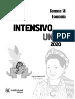 Intensivo uni cesar vallejo semana 14 ECONOMIA 2020-2