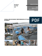 Social and economic performance of tilapia farming in Egypt
