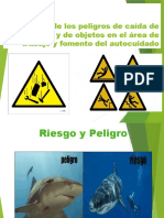 EXPOSICION COORDINADOR DE ALTRURAS DIANA