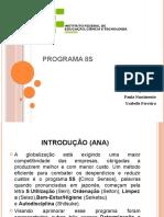 Programa 8S (p2)